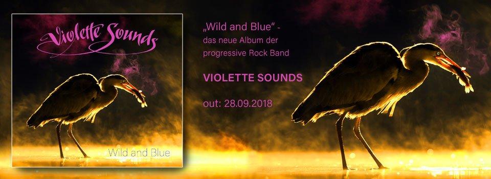 VioletteSounds_Slider_Standbild20181