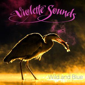 Violette Sounds