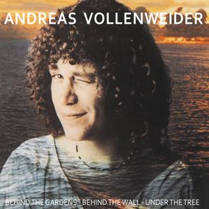 http://www.mig-music.de/wp-content/uploads/2020/07/AndreasVollenweider_BehindTheGardens_300px72dpi.png