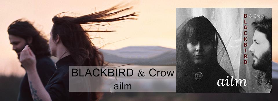 BlackbirdCrow_ailm_Slider_neu
